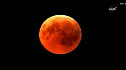 L'éclipse lunaire a fait de nombreux déçus sur les réseaux