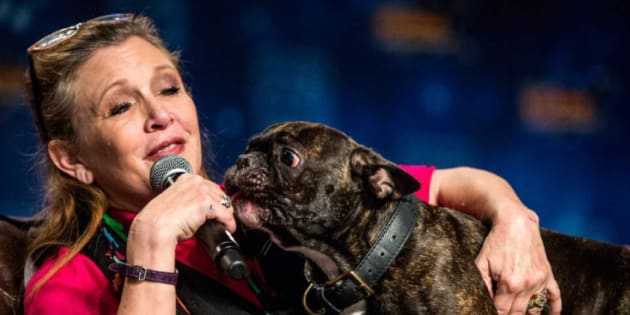 Carrie Fisher et son chien Gary