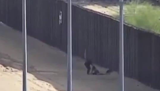 📹 Migrantes saltan el muro y son