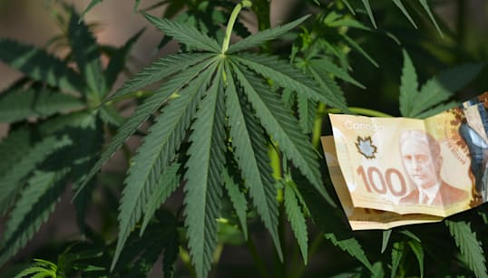 High Expectations: What To Know About Investing In Weed