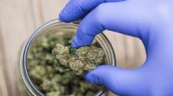 Le cannabis médical va être autorisé au Royaume-Uni dès cet