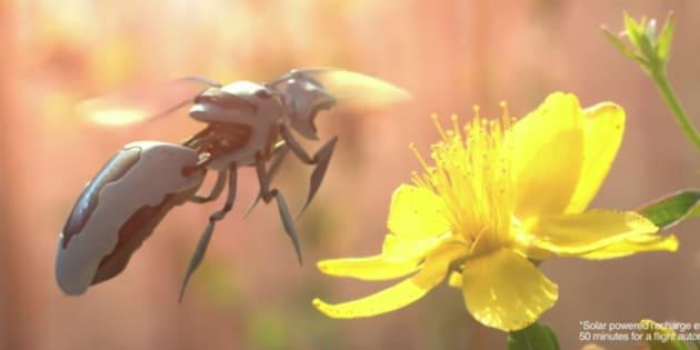 Walmart réfléchit à des abeilles robots comme dans Black Mirror