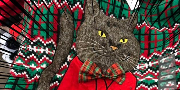我が家の黒猫を模したとしか思えない主張が激しい猫のセーター