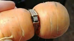 Elle retrouve la bague de fiançailles perdue 13 ans avant... autour d'une