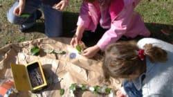 Équinoxe de printemps 2017 : Le land art, une activité en pleine nature que les enfants vont adorer (et les parents