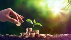 Il capitale naturale alla base della ricchezza