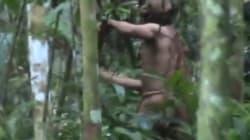 Le Brésil diffuse une rare vidéo du dernier membre d'une tribu