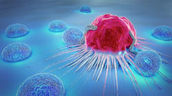 Descubren una vía para romper el 'círculo vicioso' por el que el cáncer se fortalece a sí