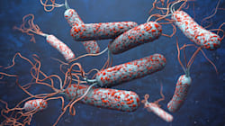 Vancouver Island Dealing With Rare Cholera