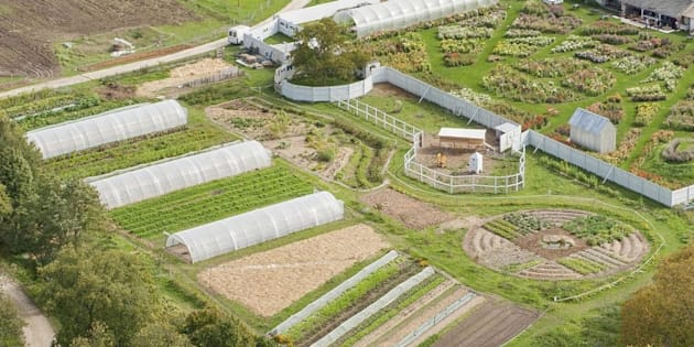 Fermes d'Avenir lance une pétition pour une agriculture libérée des produits chimiques.