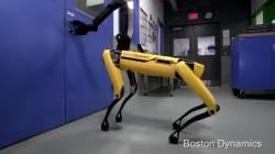 Estos perros robóticos te van a hacer pensar que 'Black Mirror' ya está