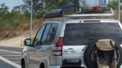 Puppy Caged, Strapped To Roof Of Car Travelling More Than 100km/h On