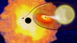 Une douzaine de trous noirs débusqués au centre de la voie