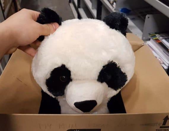 Boy leaves heartbreaking note on stuffed panda