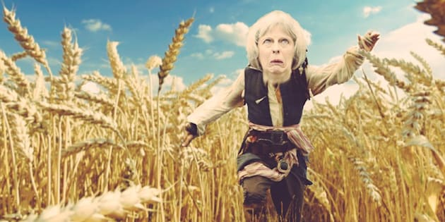 Image result for theresa may wheatfield