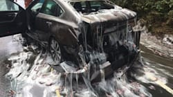 Truck Carrying Over Three Tonnes Of 'Slime Eels' Overturns On U.S.