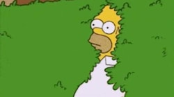 Homer Simpson Uses His Own 'Backing Into Bushes' GIF On 'The
