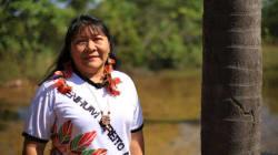 Joênia Wapichana: O nome da 1ª mulher indígena eleita deputada