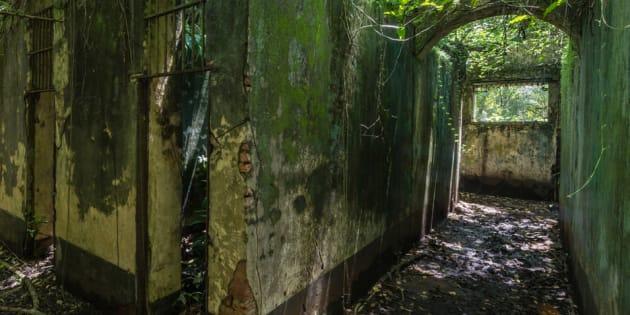 Sur les traces de Papillon dans le bagne de l'île Saint-Joseph en Guyane