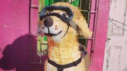 Piñatería Ramírez lo vuelve a hacer, ahora es