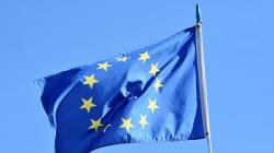 Acuerdo de libre comercio Unión Europea-Japón: luces y