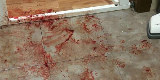 La sangre del animal, tras tratar de buscar refugio por los petardos.