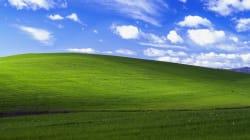 El prado perfecto de Windows XP ¿existió o es