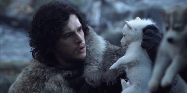 Ghost, le loup de Jon Snow, sera dans la saison 8 de Game of Thrones en 2019.