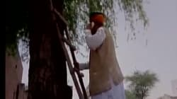 A Minister Climbed Up A Tree In Rajasthan To Make A Phone Call And That Says Plenty About 'Digital