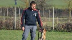 Addestratore di cani muore sbranato dal bull terrie di un