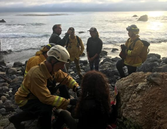 Woman found alive days after car plunges off cliff