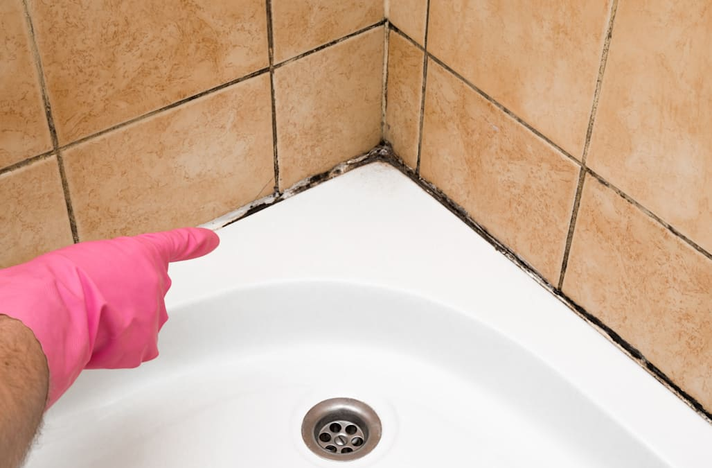 Of All The Home Cleaning Woes That Feel Like An Uphill Battle (see:  Never Ending Piles Of Laundry, Rampant Dust Bunnies), None Affect Me So  Personally As ...