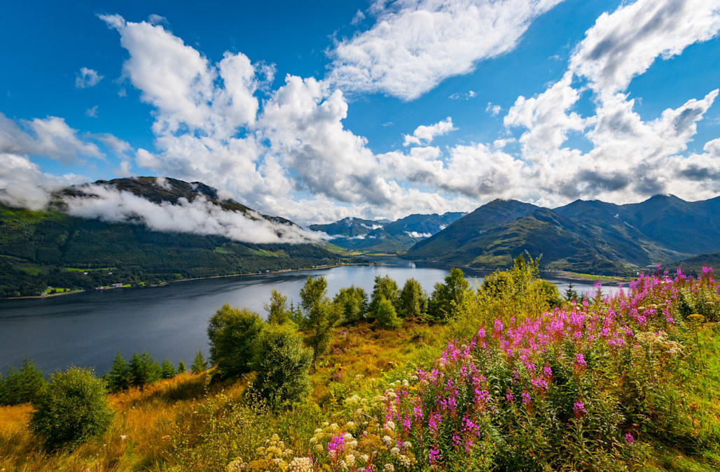 travel site votes scotland most beautiful in the world