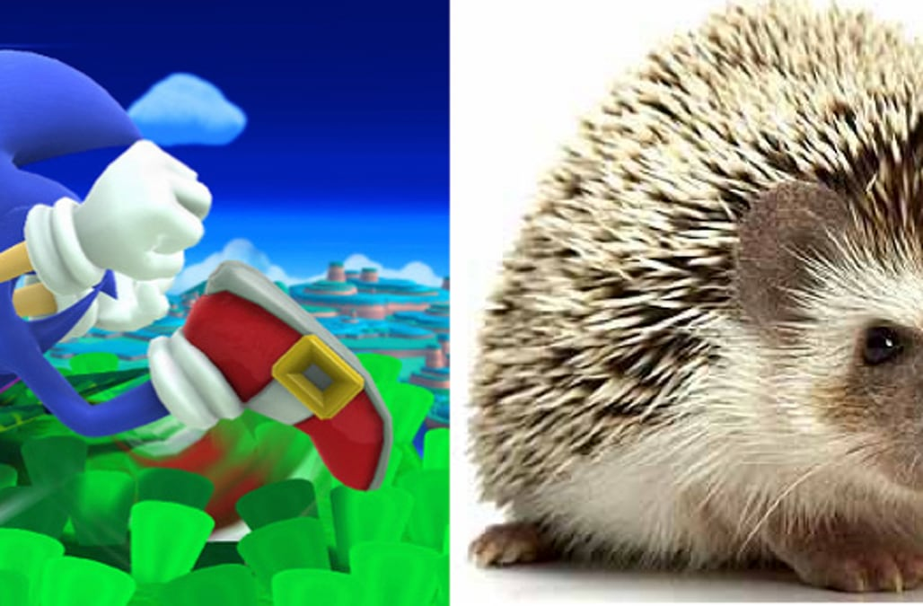 Animals In Games Vs Their Real Life Counterparts Aol Games