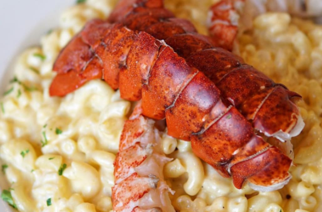 Bibs Up: These are the 18 best lobster dishes in the US - AOL Lifestyle