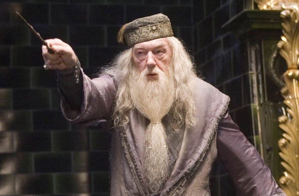 my dumbledore isnt gay