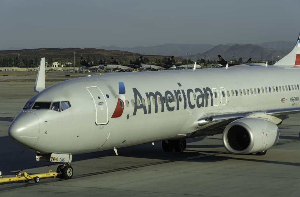 American Airlines Is Banning Many Puppies And Kittens From