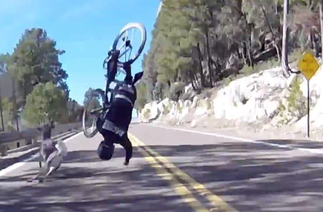 Never, ever forget your helmet: Cyclist's horrific deer crash caught