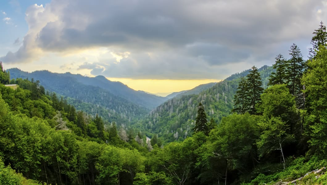 The natural landscape of the forest and mountains in the Great Smoky Mountains National Park