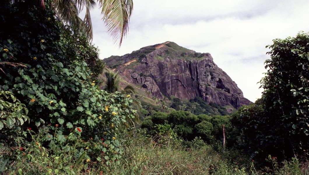 PITCAIRN - 1987/01/01: Pitcairn Island,vegetation W/christian's Cave Background. (Photo by Wolfgang Kaehler/LightRocket via Getty Images)