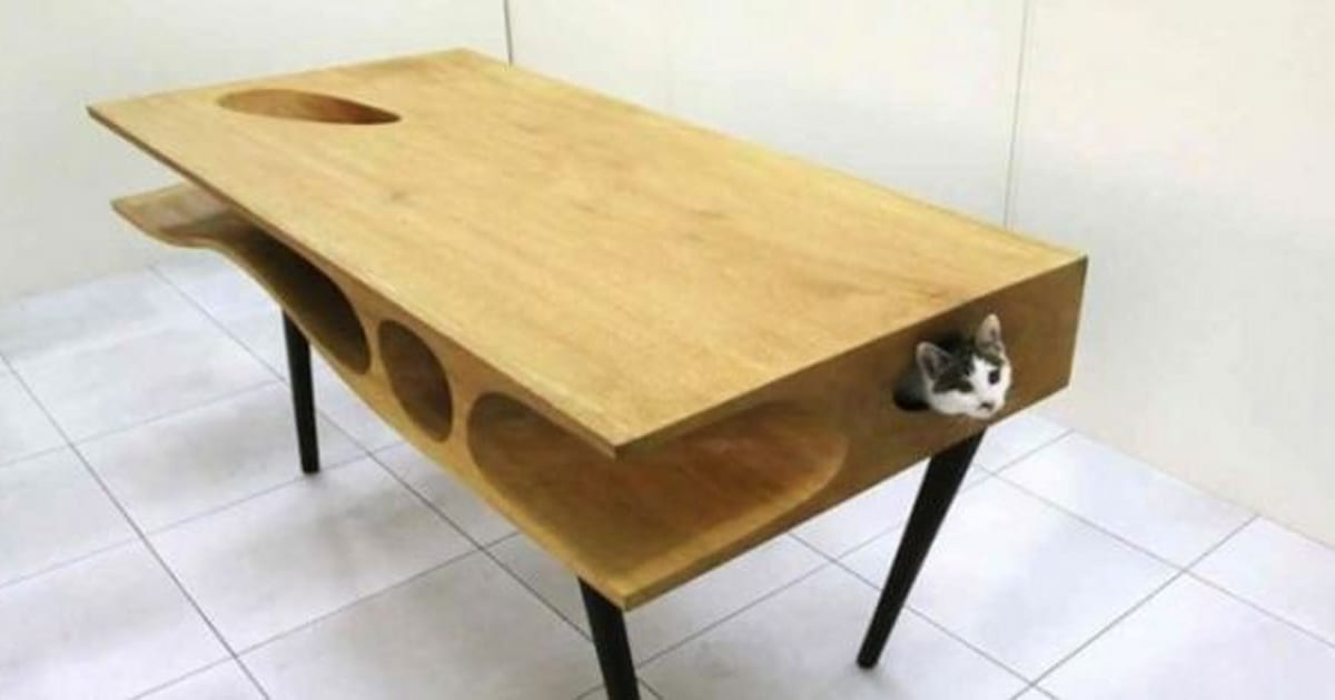 La catable un bureau parfait pour viter que votre chat for Table qui s allonge