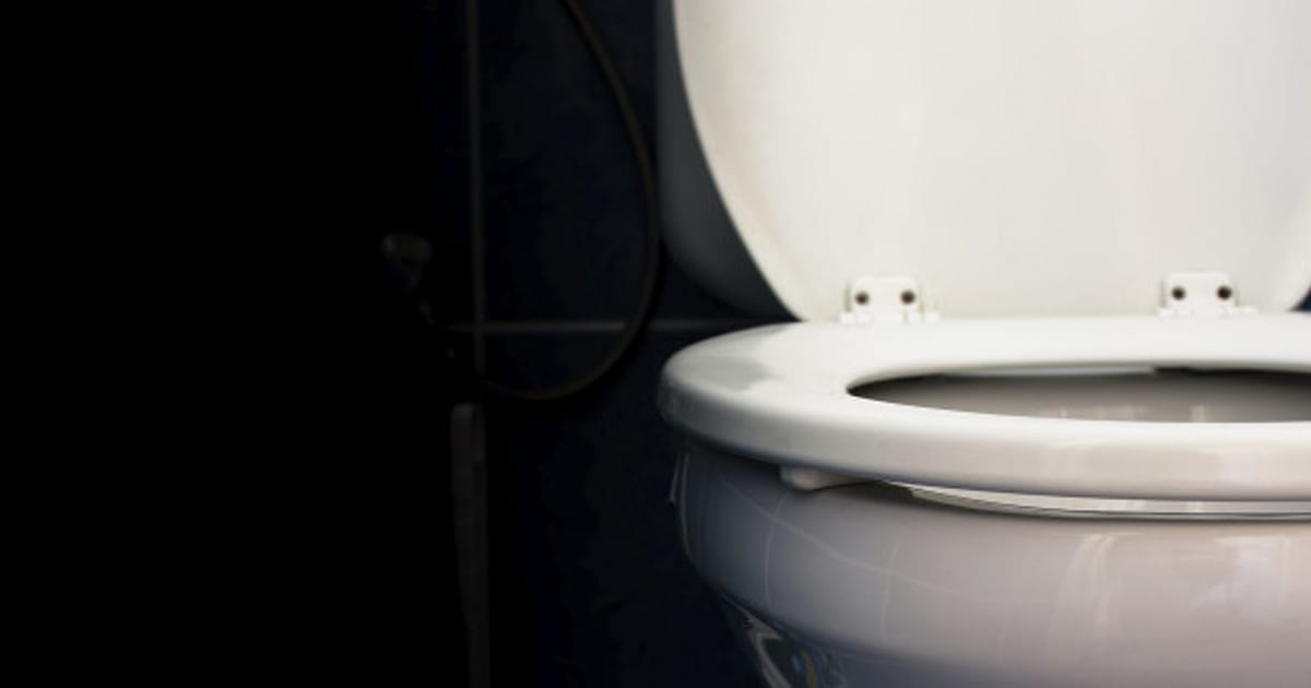 Deodorizing Toilet Seat Filters Out Smells Embarrassment