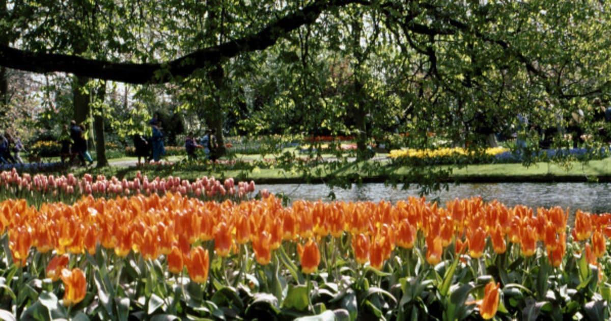 Photos les 10 plus beaux jardins du monde for Bd du jardin botanique