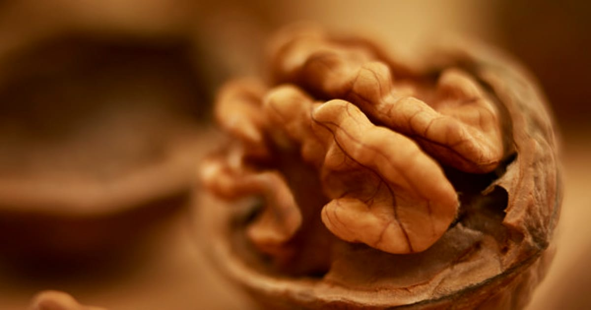 Foods for brain health what to eat to keep your mind strong - Growing french walnuts for a profit ...