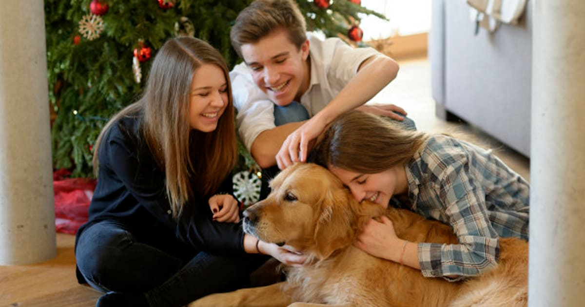 'Proteobiotics' May Keep Your Dog Healthy