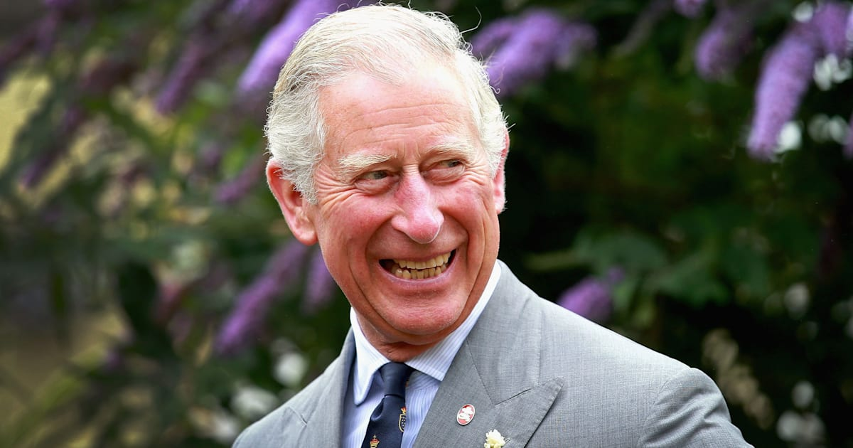 research prince charles Research prince charles throughout the years there have been many great kings and queens of great britain none should ever be overlooked, but one that stands out is prince charles phillip arthur george.