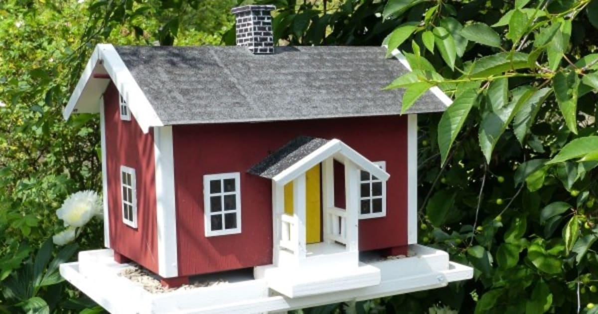 11 casas para p jaros hechas a partir de objetos viejos diy - Casas para pajaros ...
