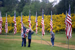 http://www.publicdomainpictures.net/view-image.php?image=16001&picture=memorial-day-flags