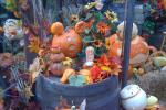 Autumn Hilden