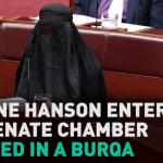 George Brandis Slams Pauline Hanson's Appalling Burqa